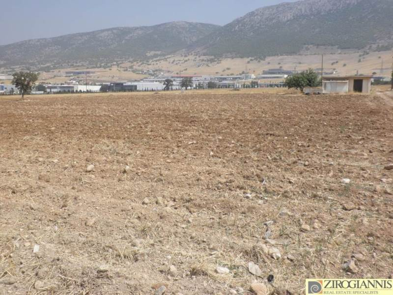 (For Rent) Land Agricultural Land  ||  West Attica/Aspropyrgos - 10.000 Sq.m, 3.000€