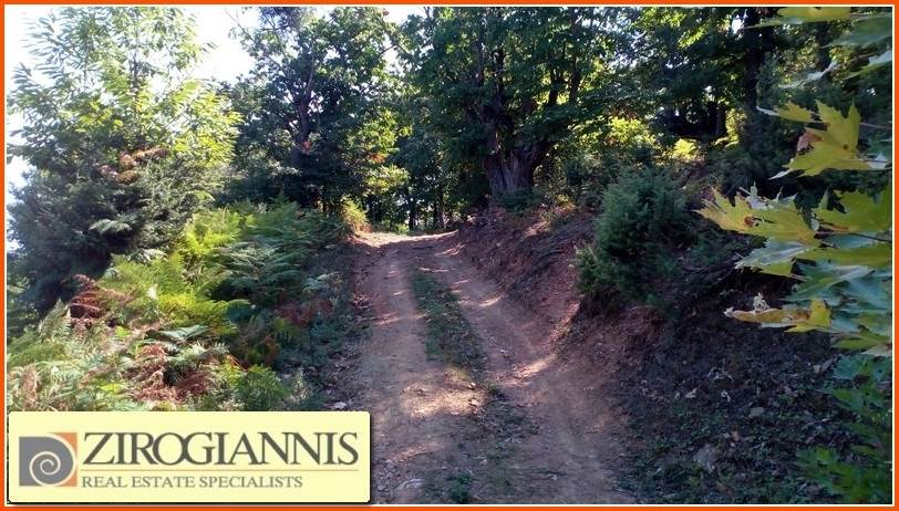(For Sale) Land Agricultural Land  || Pieria/Pieria - 12.450 Sq.m, 21.000€
